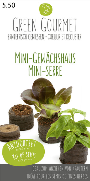 Mini-Gewächshaus