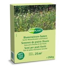 Semi per prati fioriti, 250 g