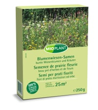 Semence de prairie fleuri, 250 ge