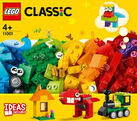 Classic 11001 Erster Bauspass LEGO® 748701200000 Bild Nr. 1