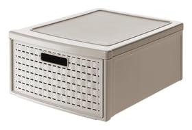 Schubladenbox gross COUNTRY Schubladenbox Rotho 604038100000 Bild Nr. 1