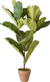 SPRING Plante artificielle 445020400000 Photo no. 1