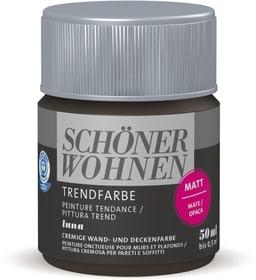 Trendfarbe Matt Tester Luna 50 ml Wandfarbe Schöner Wohnen 660961700000 Inhalt 50.0 ml Bild Nr. 1