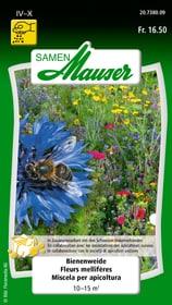 Bienenweide Blumensamen Samen Mauser 650118404000 Inhalt 30 g (ca. 18-24 m² ) Bild Nr. 1