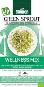 Sementi Germogli Wellness Mix 40g Sementi germogliati Blumen 650242000000 N. figura 1