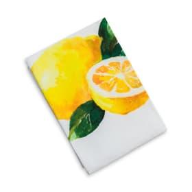 DIXIE Asciugamano da cucina 378209700000 N. figura 1