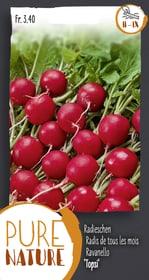 Radieschen 'Topsi' 1 Saatband Gemüsesamen Do it + Garden 287107200000 Bild Nr. 1