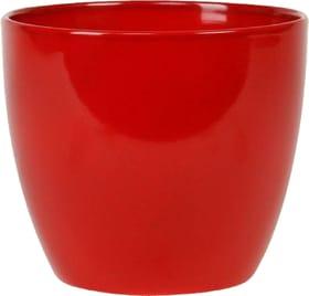 Übertopf Scheurich 657555400000 Farbe Rot Grösse ø: 25.0 cm x H: 22.0 cm Bild Nr. 1