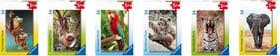 Minipuzzle animals exotic 54 p.. Puzzle Ravensburger 748675800000 N. figura 1