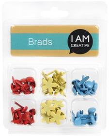BRADS, COLOURFUL I AM CREATIVE 665534700000 N. figura 1