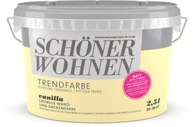 Trendfarbe Matt Vanilla 2.5 l Wandfarbe Schöner Wohnen 660963200000 Inhalt 2.5 l Bild Nr. 1