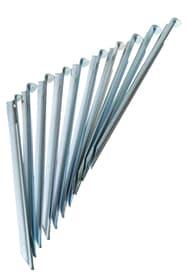 Piquets de tente 23 cm\, 10 pièces Accessoires de tente Trevolution 490526300000 Photo no. 1