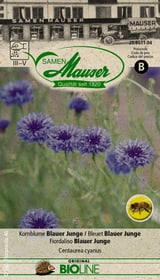 Fiordaliso colore miscela Sementi di fiori Samen Mauser 650245200000 N. figura 1