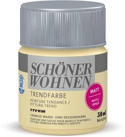 Vernice di tendenza opaca tester Cream 50 ml Schöner Wohnen 660909900000 Colore Cream Contenuto 50.0 ml N. figura 1