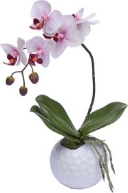 ORCHIDEE Plante artificielle 440760200000 Photo no. 1