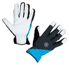 Gants d'hiver Polartex T. 9 0