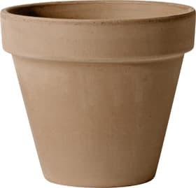 Mokka Garden Pot à fleurs Deroma 659530300000 Couleur Mocca Taille ø: 13.06 cm x H: 11.3 cm Photo no. 1