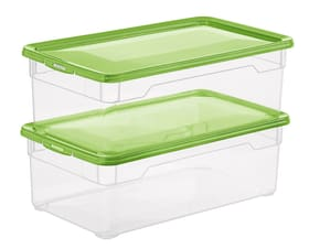 2er Set Clear Box Lady Shoe Rotho 603716700000 Bild Nr. 1