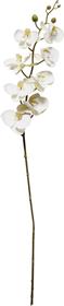 ORCHIDEE Plante artificielle 440739100000 Photo no. 1