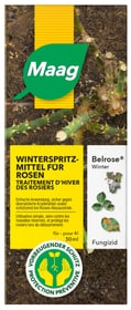 Belrose Winter, 50 ml