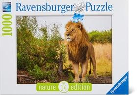 RVB 1000 Stolzer Löwe Puzzle Ravensburger 748979500000 Bild Nr. 1