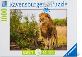 RVB 1000 Lion fier 748979500000 Photo no. 1