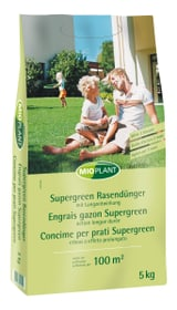 Concime Supergreen, 5 kg Concime per prati Mioplant 658246000000 N. figura 1
