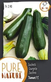 Courgette 'Diamant F1' 5g Semences de legumes Do it + Garden 287119000000 Photo no. 1
