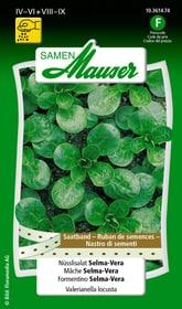 Saatband Nüsslisalat Selma-Vera Gemüsesamen Samen Mauser 650114401000 Inhalt 3 x 2.5 m Saatband für 1 - 1.5 m² Bild Nr. 1