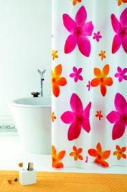 Tenda doccia Dafne diaqua 675597100000 Taglio 120 x 200 N. figura 1