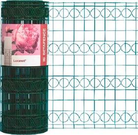 Rete Luxanet verde 636601500000 Colore Rivestito verde Taglio L: 10.0 m x A: 41.0 cm N. figura 1