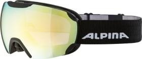 PHEOS Q Goggles Alpina 494992200121 Grösse One Size Farbe kohle Bild-Nr. 1