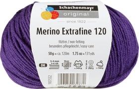 Wolle Merino Extrafine 120 Schachenmayr 665510300100 Farbe Violett Bild Nr. 1