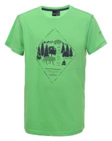 Keene Kinder-T-Shirt Icepeak 466984016460 Grösse 164 Farbe Grün Bild-Nr. 1