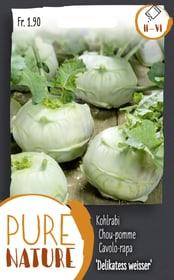 Kohlrabi 'Delikatess weisser' 2.5g Gemüsesamen Do it + Garden 287113900000 Bild Nr. 1