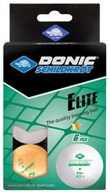 1+ Elite Poly 40+ Tischtennisball Schildkröt 491643200000 Bild Nr. 1