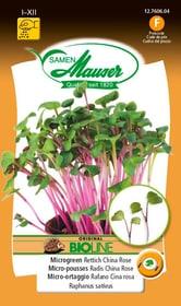 BIO-Micro-risciò Radis China Rose Sementi di gourmet Samen Mauser 650161400000 N. figura 1