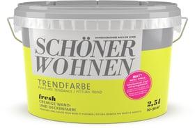 Trendfarbe Matt Fresh 2.5 l Wandfarbe Schöner Wohnen 660907400000 Inhalt 2.5 l Bild Nr. 1