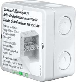AP A-Box Nass-Abzweigdose Steffen 612035900000 Bild Nr. 1