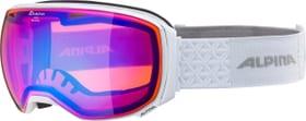 BIG HORN HM Goggles Alpina 494992800110 Grösse one size Farbe weiss Bild-Nr. 1