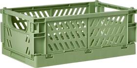 BETTY Klappbox 407628225360 Farbe Grün Grösse B: 25.3 cm x T: 16.5 cm x H: 10.0 cm Bild Nr. 1