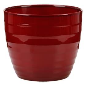 Keramik Übertopf Übertopf Scheurich 657555300019 Grösse ø: 19.0 cm x H: 17.0 cm Farbe Rot Bild Nr. 1
