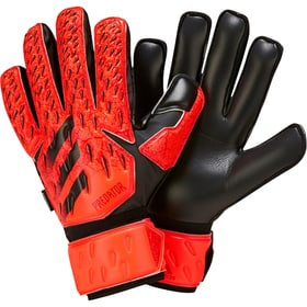 PRED GL MTC FS Fussball-Torwarthandschuhe Adidas 461971908030 Grösse 8 Farbe rot Bild-Nr. 1