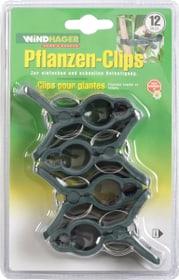 Clips pour plantes