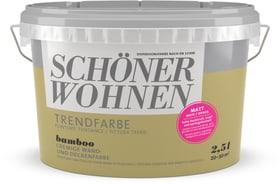 Vernice di tendenza opaca Bamboo 2.5 l Schöner Wohnen 660942400000 Colore Bamboo Contenuto 2.5 l N. figura 1