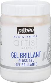 Acryl Gel Glaenzend Pebeo 663405100000 Bild Nr. 1