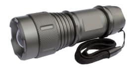 Taschenlampe TL1/100 LED