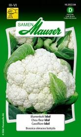 Cavolfiore Idol Sementi di verdura Samen Mauser 650108901000 Contenuto 1 g (ca. 60 piante o 10 - 12 m²) N. figura 1