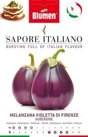 Melanzana Violetta di Firenze Sementi di verdura Blumen 650164600000 N. figura 1