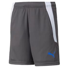 teamLIGA Training Shorts 2 JR Fussballshort Puma 466865712880 Grösse 128 Farbe grau Bild-Nr. 1